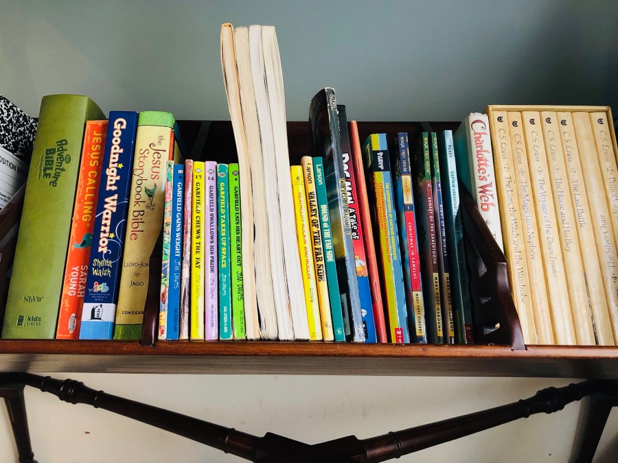 The Book Dilemma Solved – Little Red Stool Organizing